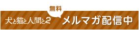 banner_merumaga