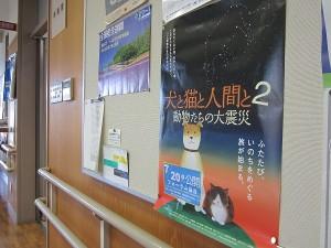 仙台市動物管理センター